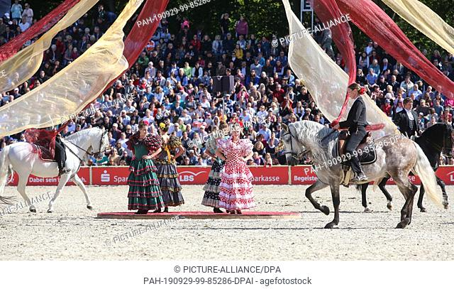 """29 September 2019, Baden-Wuerttemberg, Gomadingen-Marbach: During the 2019 Stallion Parade, a group of Spanish riders will be on their way to the """"""""Spain""""""""..."""