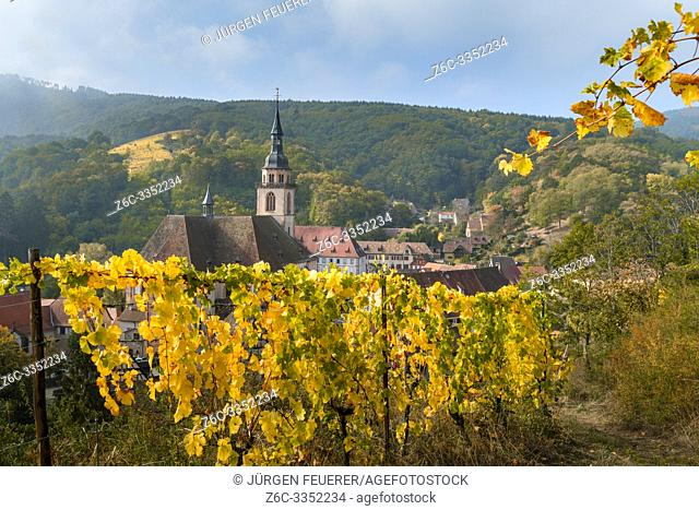 panorama of the village Andlau and its vineyards, Alsace Wine Route, France, view from above