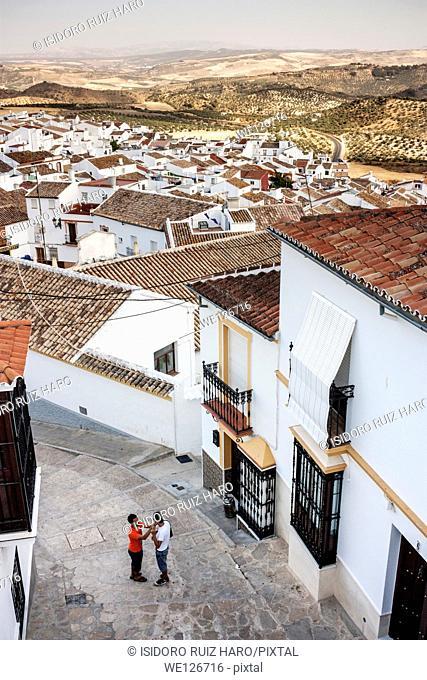 Roofs (aerial view). Olvera. Ruta de los Pueblos Blancos. Cádiz. Andalucia. Spain