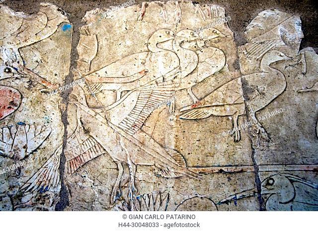 Deir el Bahari, Luxor, Egypt: temple of the queen Hatshepsut (New Kingdom 1567-1080 b.C.) at Deir el Bahari called Djeser-Djeseru: sculptures on the walls