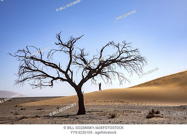 Person taking pictues on Dune 45 in Namib-Naukluft National Park, Namibia, Africa