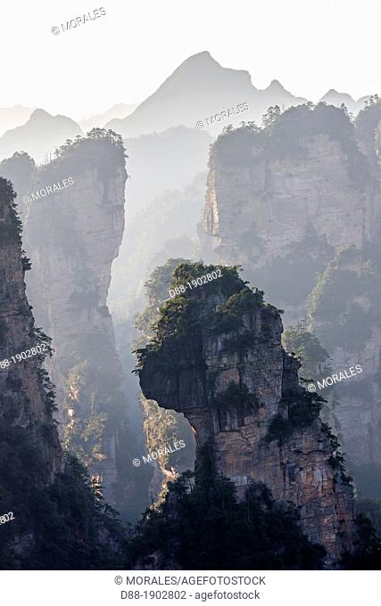 China, Hunan Province, Zhangjiajie National Forest Park, Unesco World Heritage Site, Hallrlujah Mountains, Floating Mountains, Avatar filming site, morning view