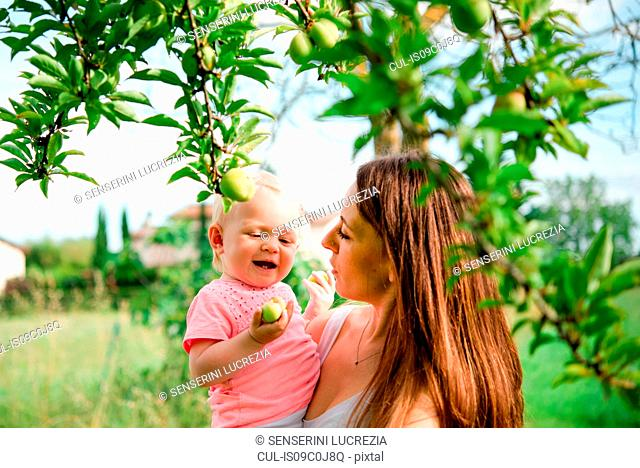 Mother carrying toddler daughter under fruit tree, head and shoulder, Arezzo, Tuscany, Italy
