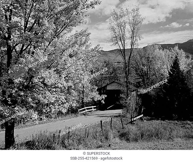 USA, Vermont, near Underhill Flat, covered bridge and road
