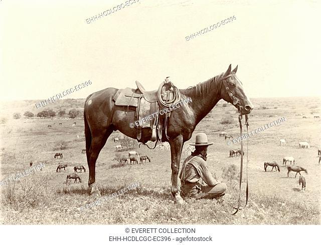 The Horse Wrangler, photograph by Erwin E. Smith, June 24, 1910