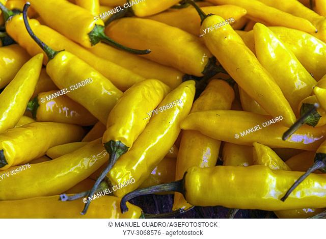 Peppers displayed in the Caserio (farm) produce market held on the last Monday of October in Gernika, Biscay, Basque Country, Spain