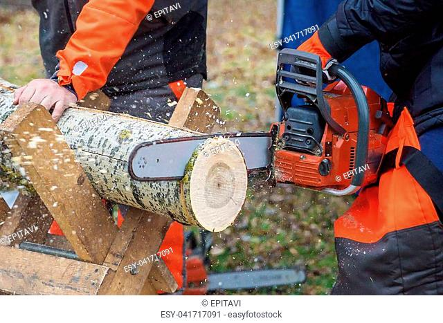 Dangerous work: professional woodcutter in protective overalls saws a log of wood, lying on a stand, with a chainsaw, close-up