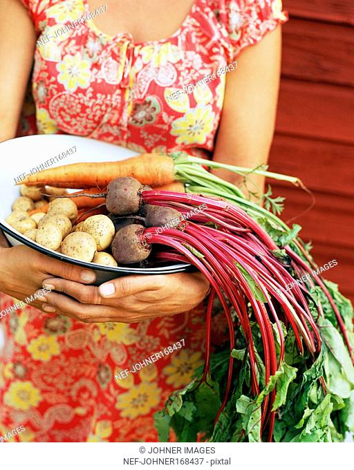 Root vegetables in a bowl