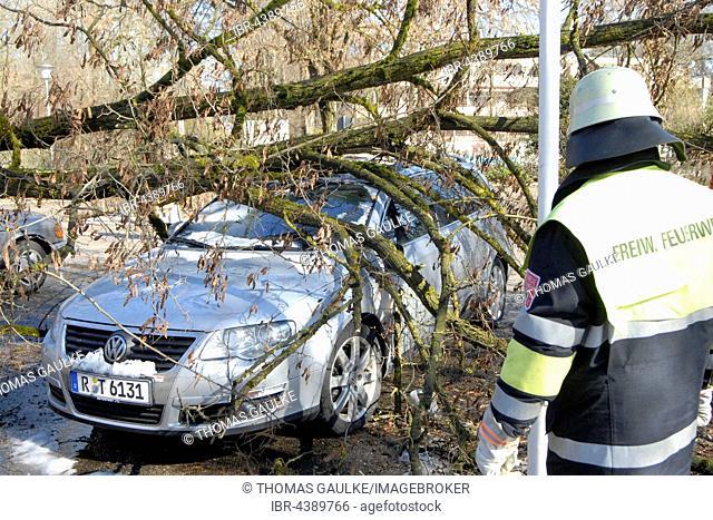 Storm damage, tree on parked car, Munich, Upper Bavaria, Bavaria, Germany