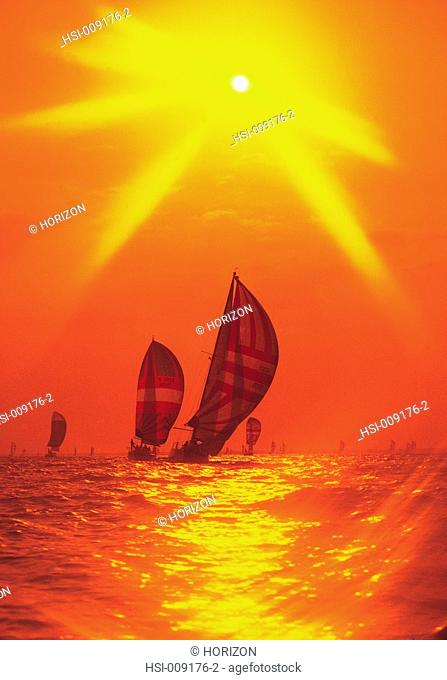 Lifestyle, Sport, Sailing, Yacht race, Spinnakers, Sunset