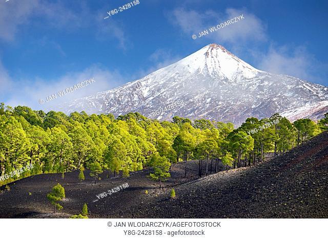 View of Teide Volcano Mount, Tenerife, Canary Islands, Spain