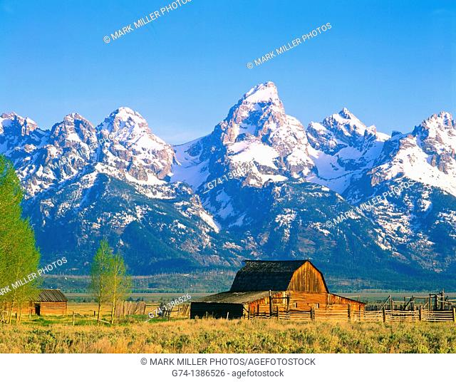 Grand Tetons and Old Homestead barn Wyoming USA