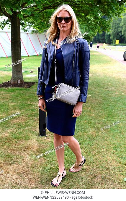 The Cartier Queen's Cup 2015 Polo Finals Featuring: Jodie Kidd Where: London, United Kingdom When: 14 Jun 2015 Credit: Phil Lewis/WENN.com