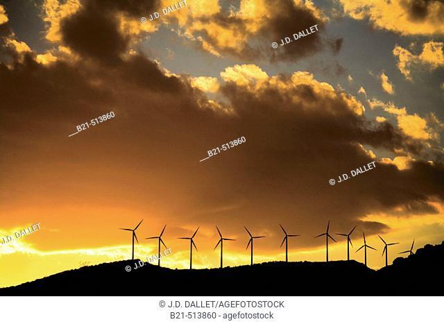 Windfarm near Sos del Rey Catolico. Cinco Villas, Zaragoza province, Aragón, Spain