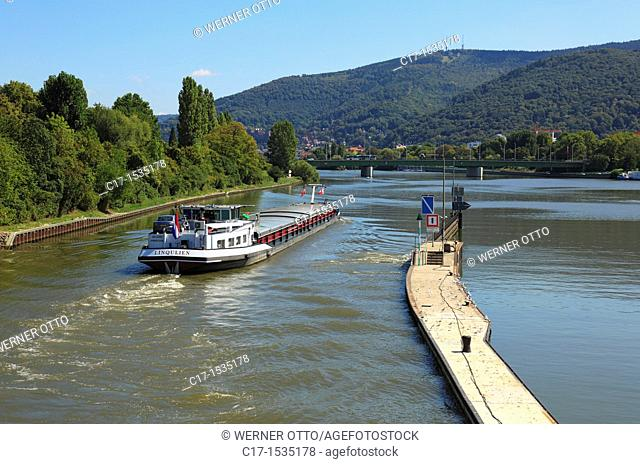 Germany, Heidelberg, Neckar, Rhine-Neckar area, nature reserve Neckartal-Odenwald, Bergstrasse, Odenwald, Baden-Wuerttemberg, Heidelberg-Wieblingen