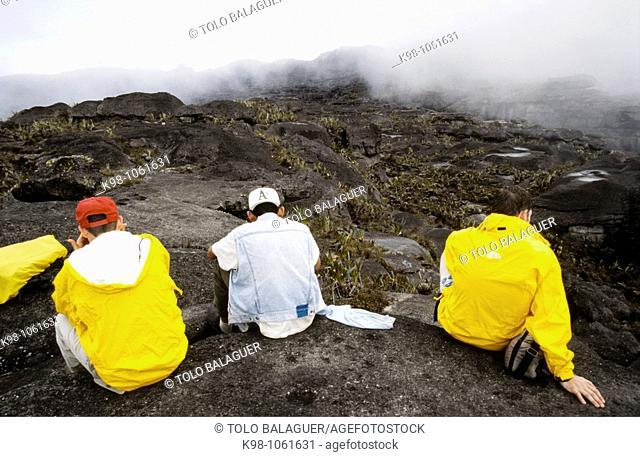 Roraima tepuy (2810 m), Gran Sabana region, state of Bolivar, Venezuela