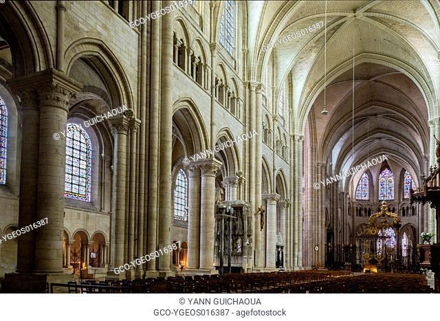 The cathedral Saint Etienne, Sens, Yonne, Burgundy, France