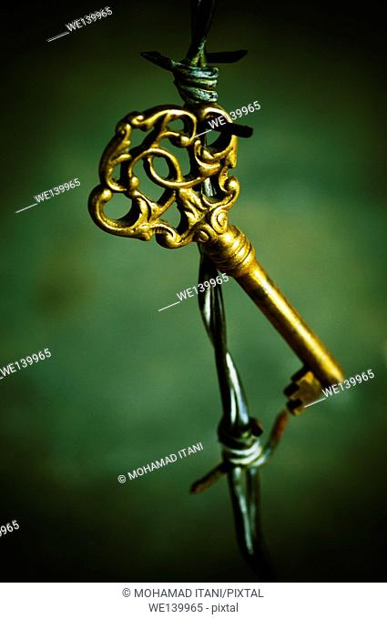 Brass ornate key on barbwire