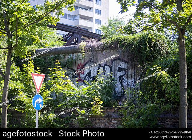 11 August 2020, Berlin: An overgrown section of the Berlin Wall on Liesenstraße. 59 years ago, on August 13, 1961, construction of the Wall began