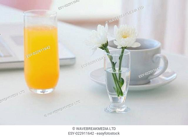 White flower in a vase with coffee and orange juice on table