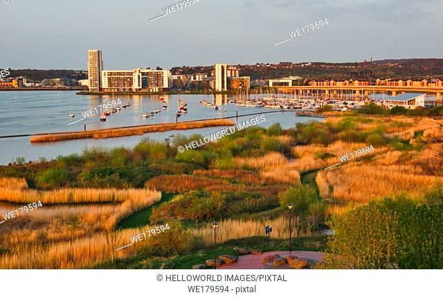 Cardiff Bay Wetlands Reserve, Cardiff Bay, Cardiff, Wales, United Kingdom