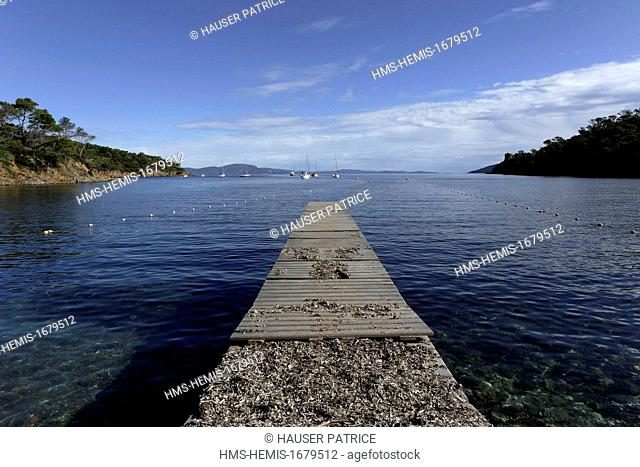 France, Var, Iles d'Hyeres, Parc National de Port Cros (National park of Port Cros), Port Cros island, Port-Man bay
