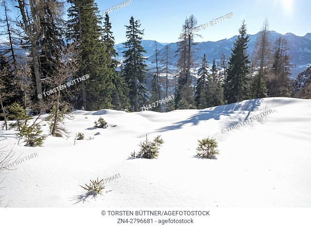 Hoher Nock mountain area in Limestone Alps National Park in Winter, Upper Austria, Austria