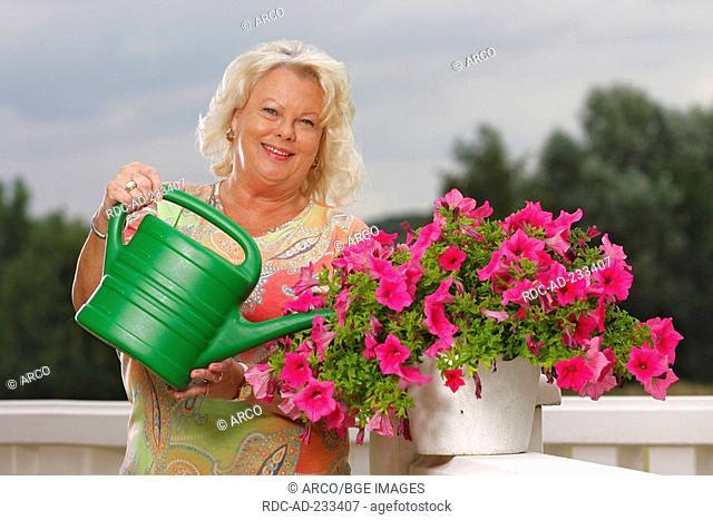 Woman watering petunia, Petunia hybride, watering can
