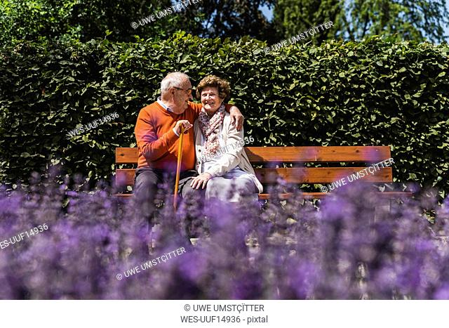 Senior couple sitting on bench in a park, falling in love