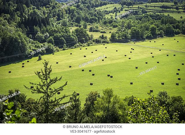 View of cereal field near Lect (department of Jura, region of Bourgogne-Franche-Comté, France)