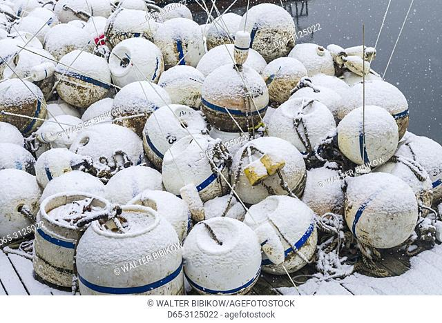 USA, New England, Cape Ann, Massachusetts, Annisquam, Annisquam Harbor, fishing buoys, winter