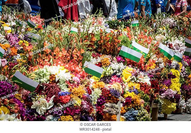 Desfile de Silleteros, Feria de las Flores, Medellin, Antioquia, Colombia
