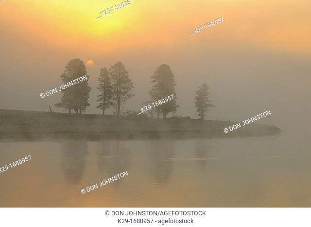 Foggy sunrise over the Yellowstone River in the Hayden Valley, Yellowstone NP, Wyoming, USA