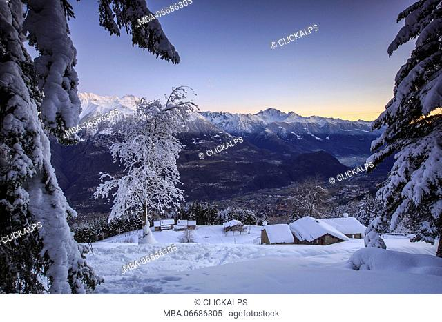 Lights of dawn on snow covered huts and trees Tagliate Di Sopra Gerola Valley Valtellina Orobie Alps Lombardy Italy Europe
