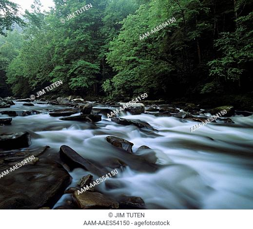 Little Pigeon River, Great Smoky Mountains N.P., TN, Tennessee