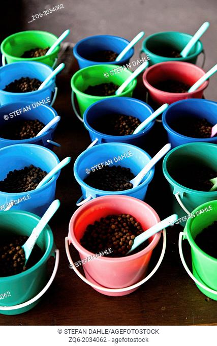 Colourful Buckets on a Table in Bangkok