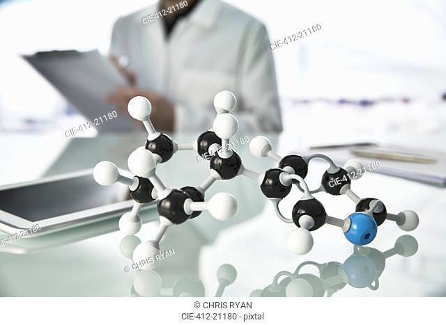 Scientist working with molecular model and digital tablet in lab