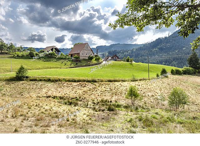 big old farm with surrounding meadows on the territory of Baiersbronn, Northern Black Forest, Germany, village Schönegründ in the Murg valley near Freudenstadt