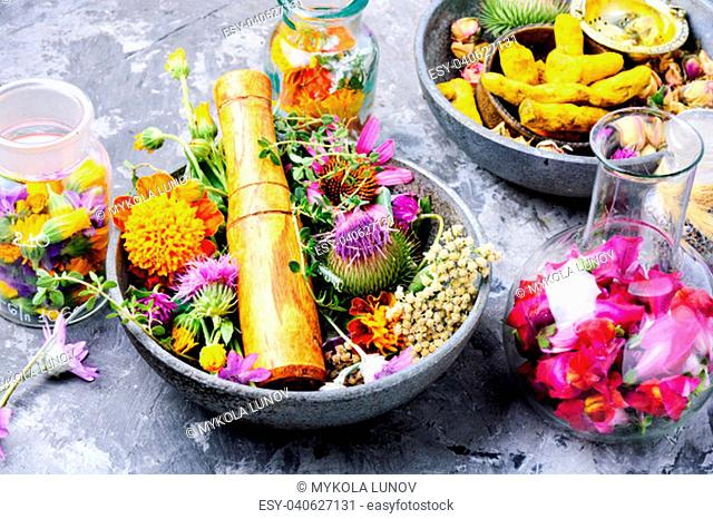 Various raw medical herbs and flowers.Alternative medicine concept