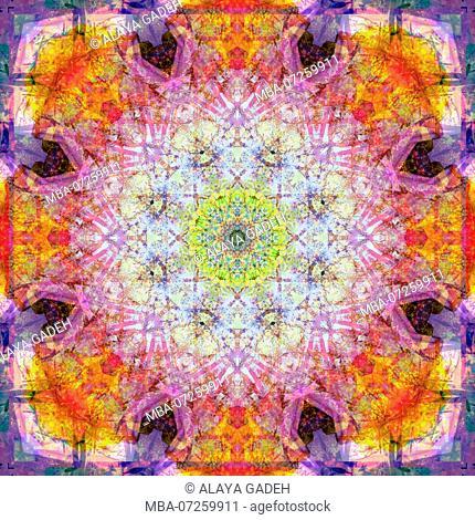 Photographic flower mandala, yellow, pink, orange, purple
