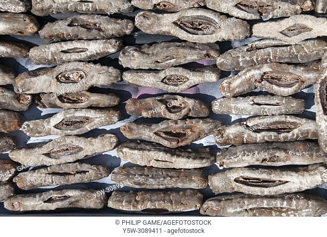 Sun-dried seafoods laid out near Central Market, Kota Kinabalu, Sabah, Malaysian Borneo
