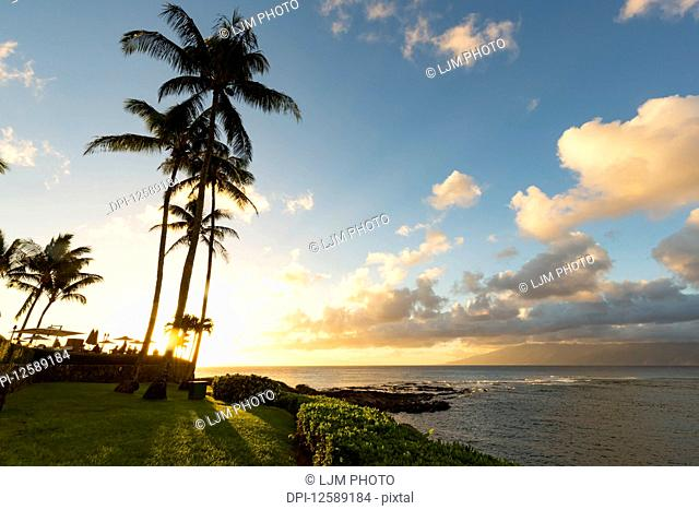 Silhouette of palm trees and restaruant patio umbrellas on the shoreline of Kapalua Bay at sunset; Ka'anapali, Maui, Hawaii, United States of America