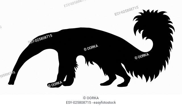 Vector illustration of giant anteater silhouette