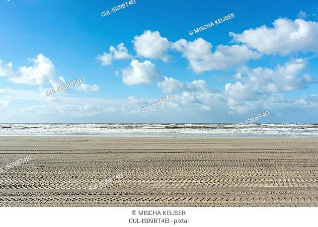 North sea beach with tyre tracks, Netherlands
