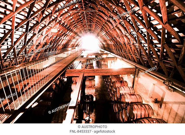 Winery Igler in Burgenland, Austria
