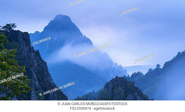 Landscape at dusk. In the port of tarna, Puerto de Tarna, Redes Natural Park, Caso Council, Asturias, Spain, Europe