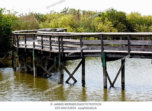 Wooden walkway leads through alligator-infested marshes of the Everglades in Florida, USA