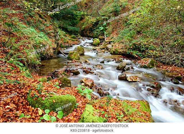 Belgrande River. Asturias. Spain