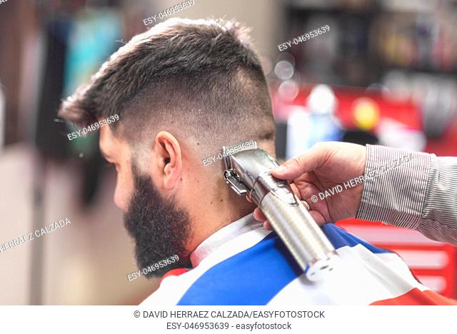 Handsome bearded man, getting haircut by barber, with electric trimmer at barbershop