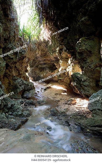 Andersons Dale Trail, Christmas Island, Australia